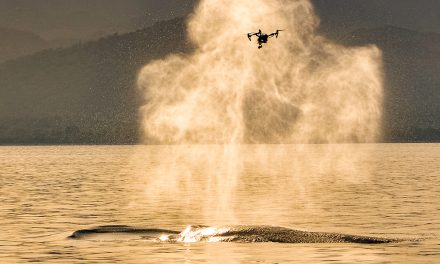 Can Drones Democratize Research and Data Collection of our Oceans?